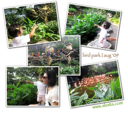 http://www.slesta.com/files/birdpark1.jpg