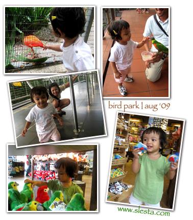http://www.slesta.com/files/birdpark2.jpg